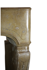 17Th Century Country Chique French Fireplace Surround