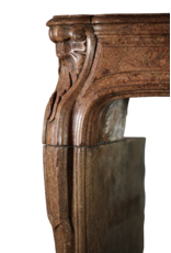 Chique Período Directorio Antiguo Chimenea