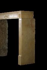 Elegant Timeless Vintage Fireplace Mantle