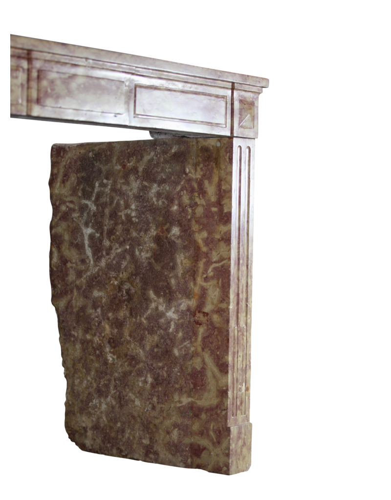 Amplia Chimenea Bicolor Francesa Del Siglo XIX De Piedra Dura De Borgoña
