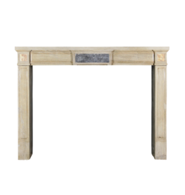 Neo Classical French Antique Fireplace Surround