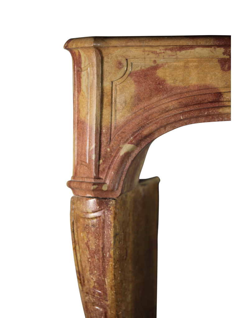 18Th Century French Antique Fireplace Surround In Bicolor Stone