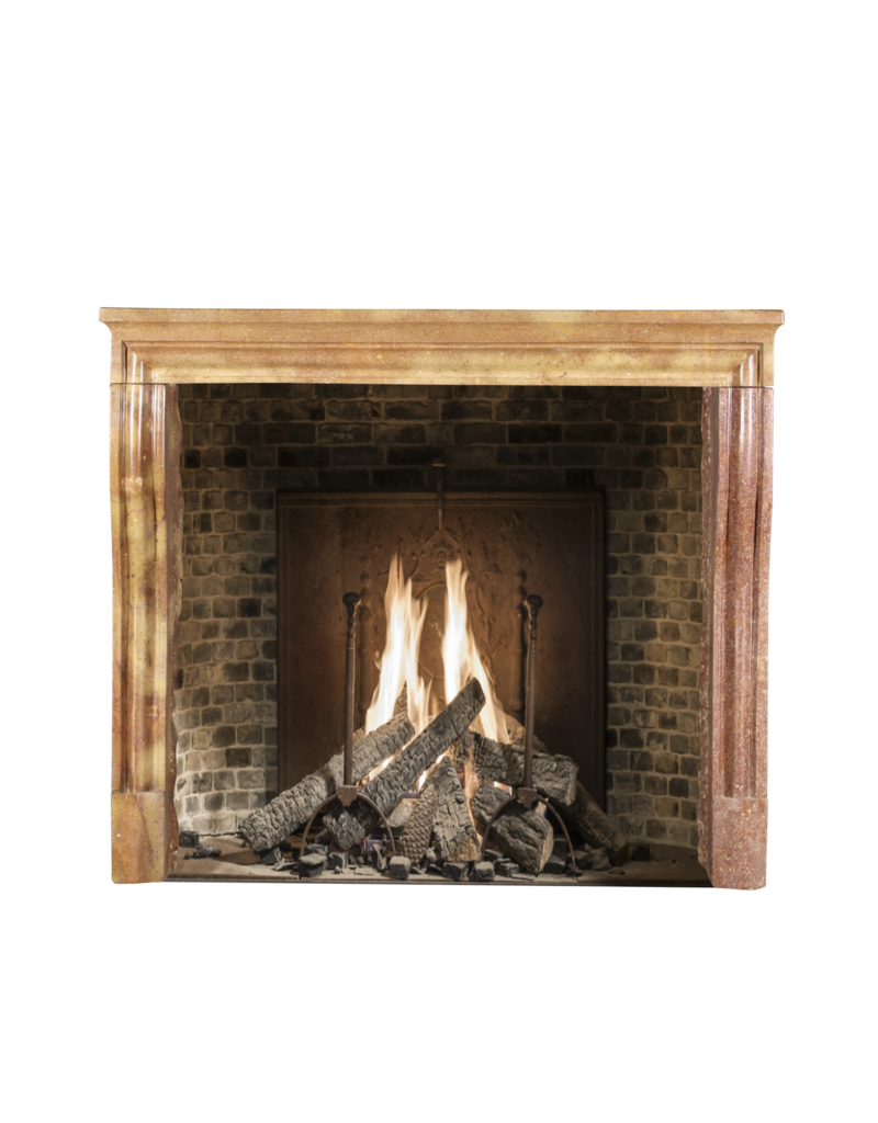 Vintage Fireplace Surround In Bicolor Stone