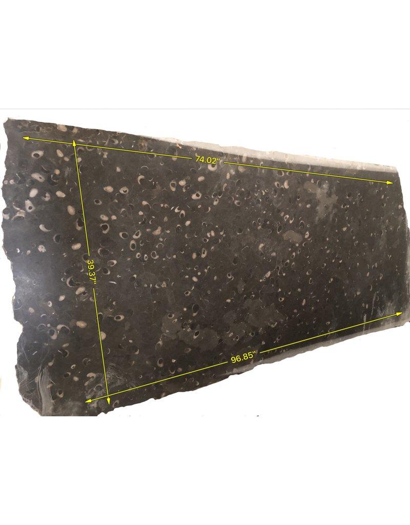 Original Fossil Stone Slab