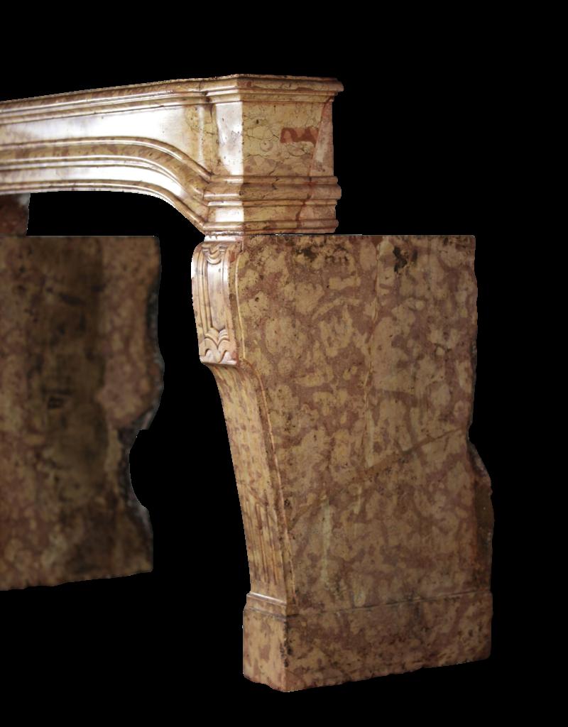 Alrededores De La Chimenea Del Castillo Francés Del Siglo XVIII