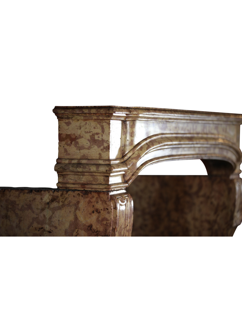 The Antique Fireplace Bank 18Th Century French Castle Fireplace Surround
