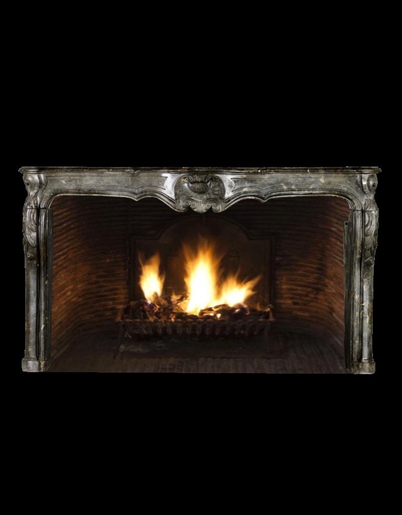 The Antique Fireplace Bank Del Periodo  Siglo 18 Francés Antiguo Revestimiento En Piedra Fósil