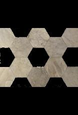 Maison Leon Van den Bogaert Antique Fireplaces & Vintage Architectural Elements  Hexagonale piso de mármol antiguo para mezclar con otro color