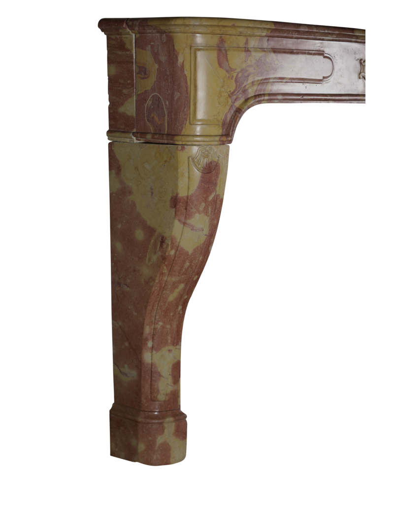 Maison Leon Van den Bogaert Antique Fireplaces & Vintage Architectural Elements Chimenea De Piedra Bicolor Francesa Luis XIV
