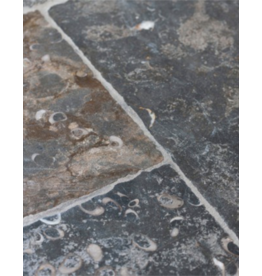 French Cut Fossil Stone