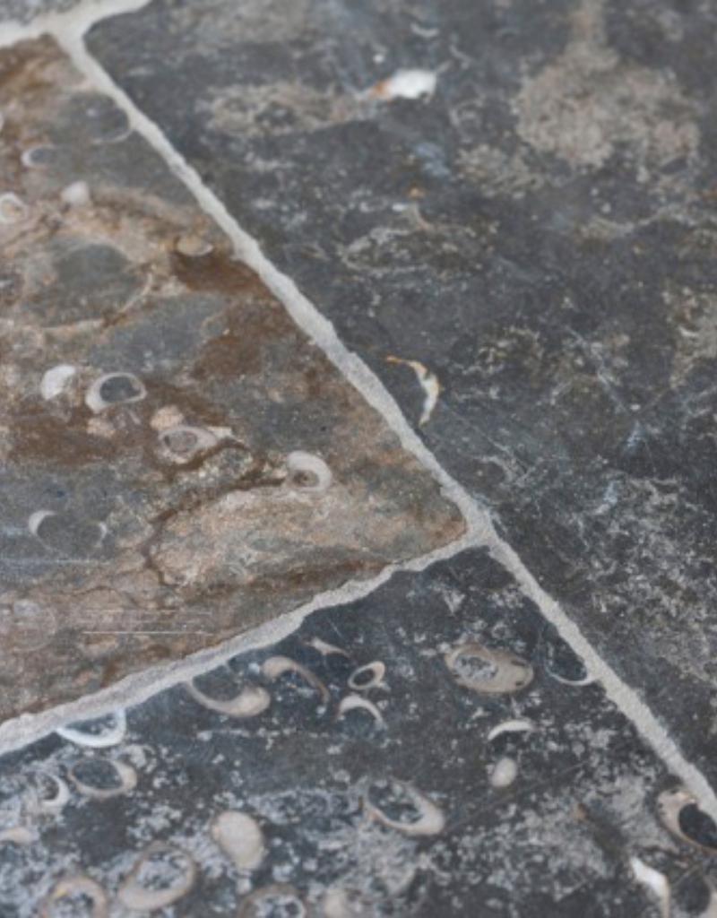 Französische Fossile Steintäler
