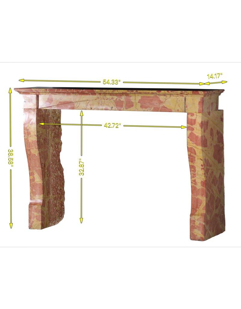 Maison Leon Van den Bogaert Antique Fireplaces & Vintage Architectural Elements Zeitloser zweifarbiger Steinkamin