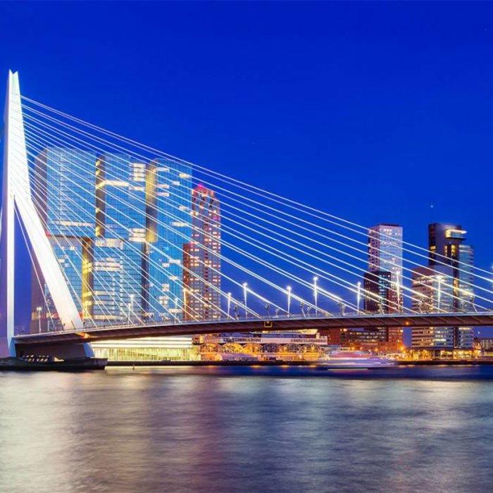 Paardenmelk Rotterdam