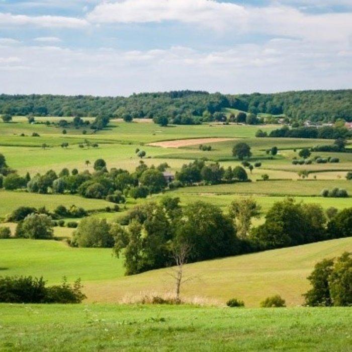 Paardenmelk kopen in Limburg?