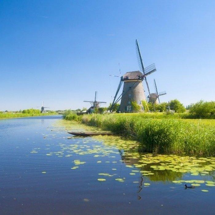 Paardenmelk Noord-Holland