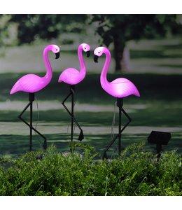 HI Grondpinnen 3 st solar LED flamingo