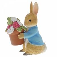 Beatrix Potter - Peter Rabbit Brings Flowers