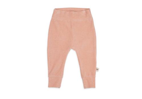 We Say No Pants Pink Sand Velvet