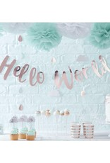 Ginger Ray Slinger rosé goud Hello World | 2 meter