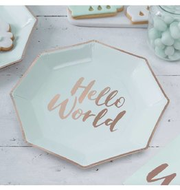 Ginger Ray Papieren bordjes 'Hello World' | 8st