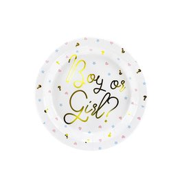 PartyDeco Papieren bordjes gender reveal | 6st
