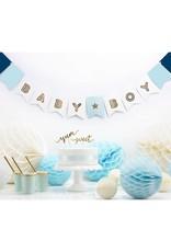PartyDeco Honeycomb lichtblauw (20 cm)
