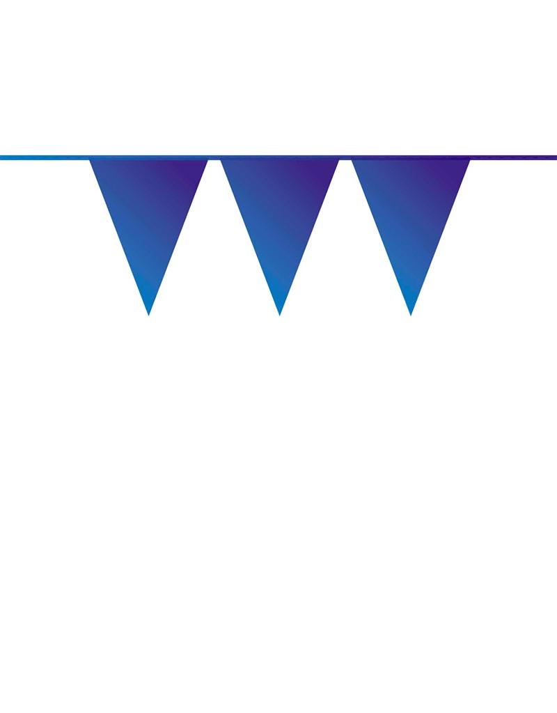 HAZA Vlaggenlijn blauw | 10 meter