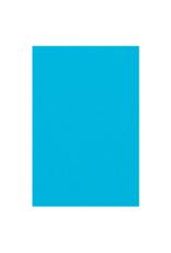 HAZA Plastic tafelkleed blauw | 137 x 274 cm