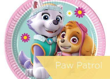 Paw Patrol Skye & Everest