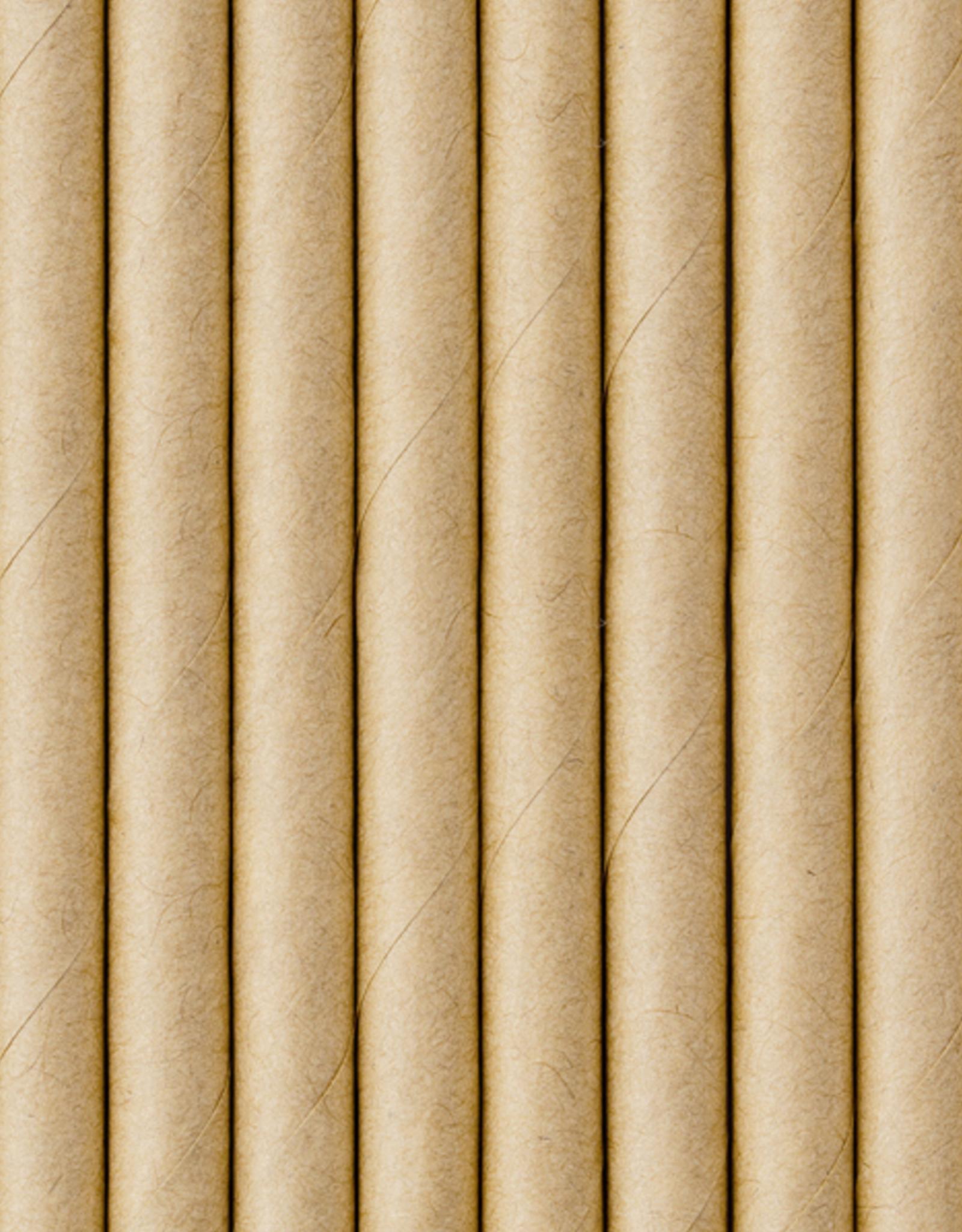 PartyDeco Papieren kraft rietjes |10 stuks