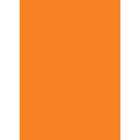 Prijskaartkarton fluor oranje 6x8 cm 100 stuks