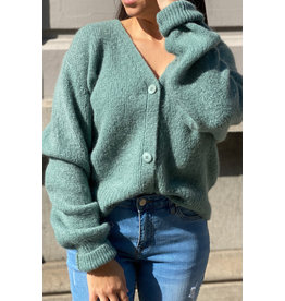 she's milano She's Milano x button cardigan sage green
