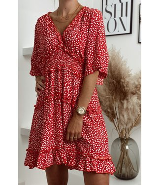 Rouge dot ruffle dress