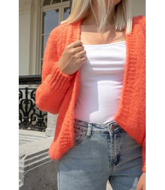 Musthave gilet - coral