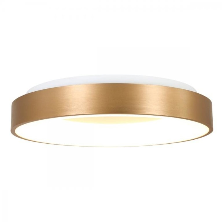 Steinhauer Plafondlamp Ringlede 48cm goud