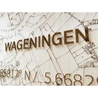 Citymap Wageningen | houten wanddecoratie