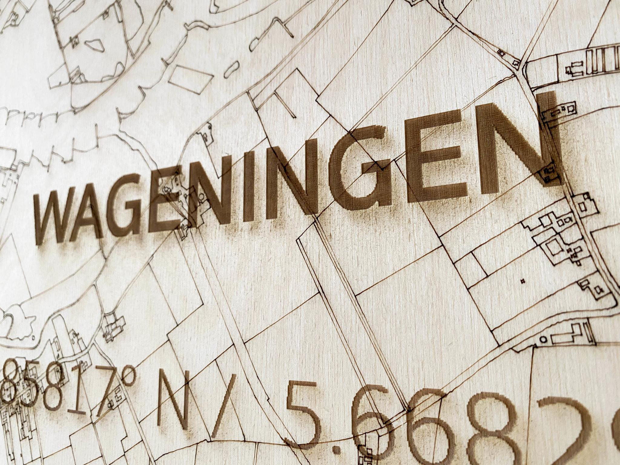 Citymap Wageningen | houten wanddecoratie-4