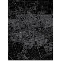Citymap Leeuwarden | Aluminium wanddecoratie
