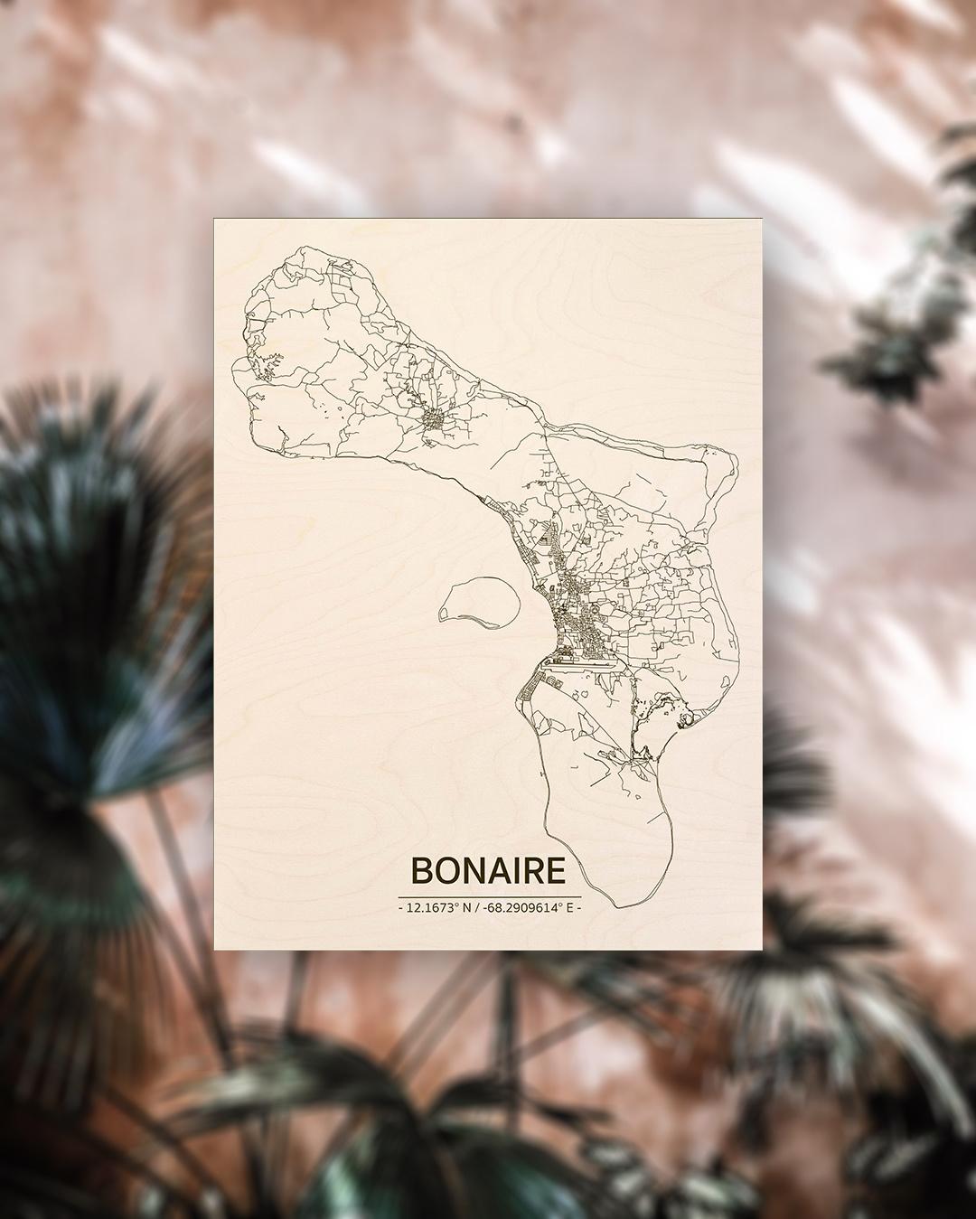Citymap Bonaire | wooden wall decoration-2