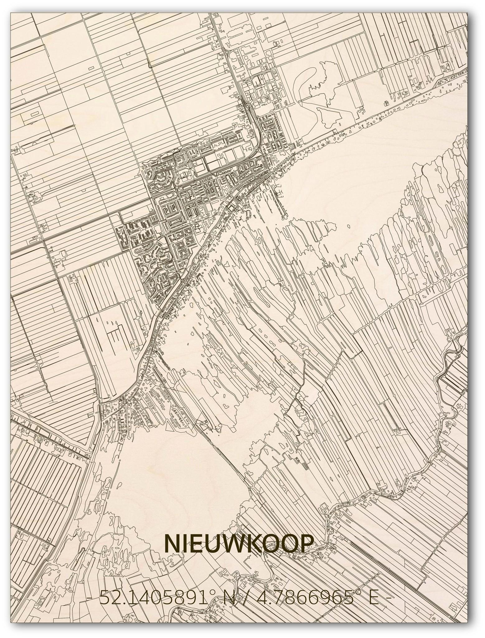 Citymap Nieuwkoop | houten wanddecoratie-1