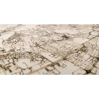 Citymap Edinburgh | wooden wall decoration