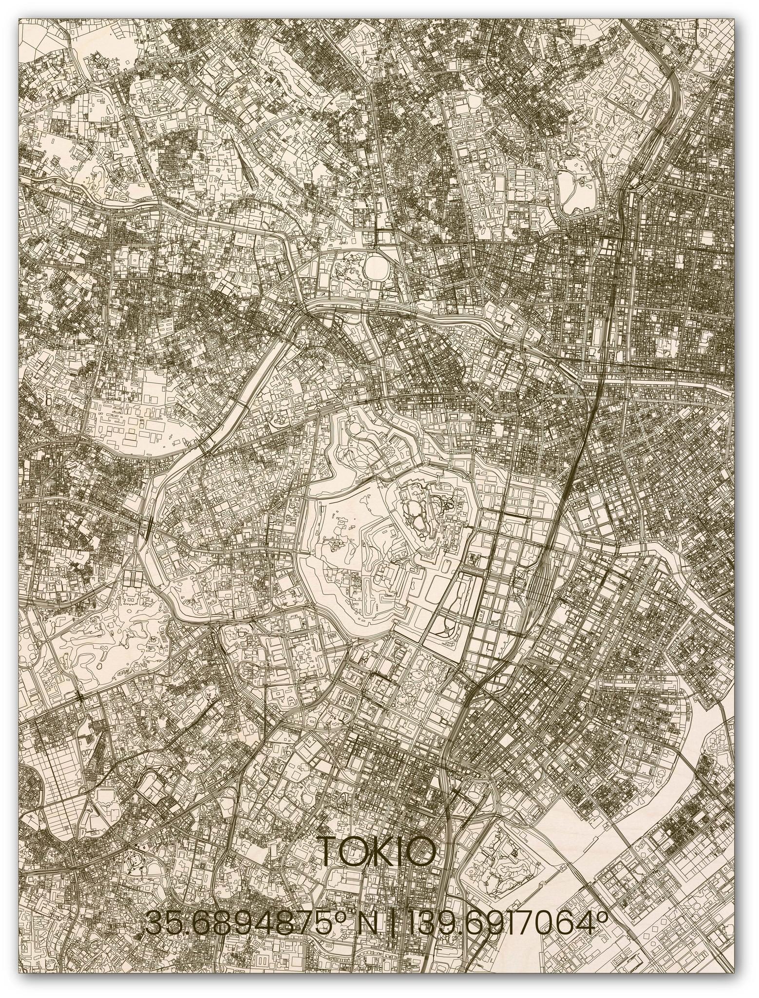 Houten stadsplattegrond Tokio-1