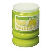 Bolsius Bolsius - Partykerzenlicht - Citronella - Limette