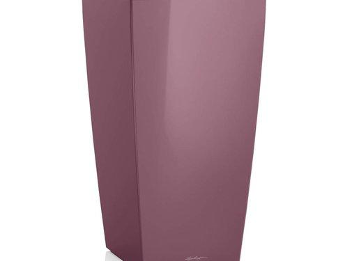 Lechuza Lechuza Cubico Premium 30 Plum magic ALL-IN-ONE LEC18213 4008789182135 WINTEREDITION