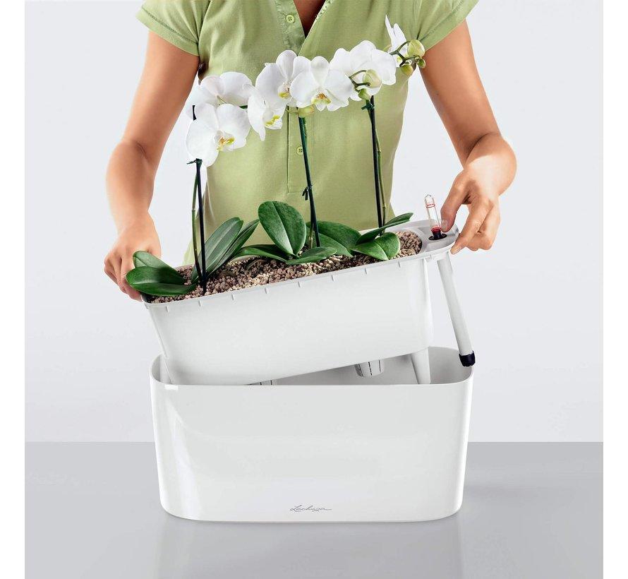 Lechuza -   plantenbak Delta Premium 10 antraciet metallic ALL-IN-ONE set