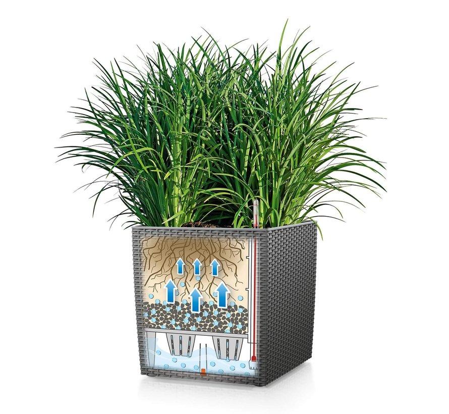 Lechuza - plantenbak CUBE COTTAGE 40 grafietzwart ALL-IN-ONE set