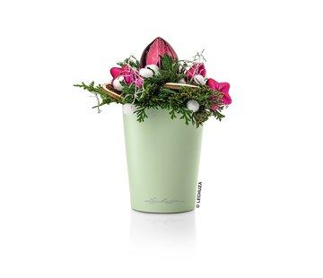 Lechuza Lechuza - Mini-Deltini mint green high-gloss ALL-IN-ONE set
