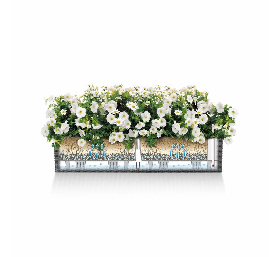 Lechuza - plantenbak BALCONERA COTTAGE 80 grafietzwart ALL-IN-ONE set