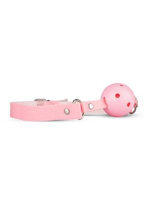 Secret Pleasure Chest Secret Pleasure Chest - Pink Pleasure