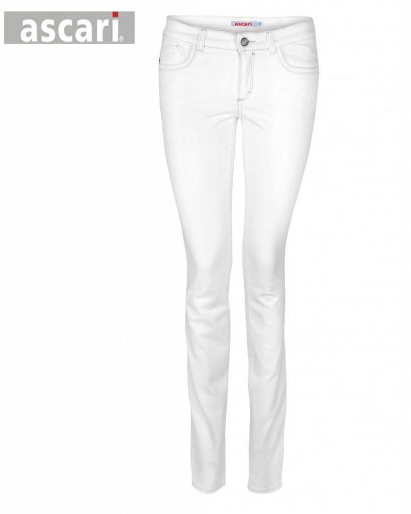 Ascari Jeans Power Wit